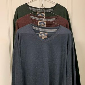 Get all 3! NWOT Grizzly Mountain V-necks.